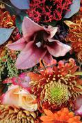 Flower arrangement in autumn colors Stock Photos