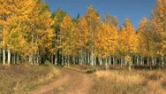 Mountain Landscape in Fall Stock Footage