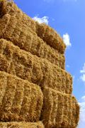 straw bale - stock photo