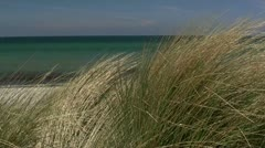 Beach Grass in front of Turquoise Water - Baltic Sea, Northern Germany Stock Footage