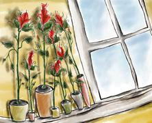 roses on the window.jpg - stock illustration