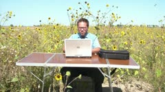 Business-office-in-sunflower-field Stock Footage