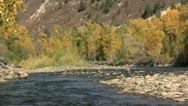 Mountain River Landscape in Fall Stock Footage