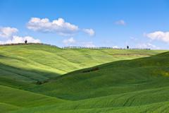light and shadows on tuscan hills - stock photo