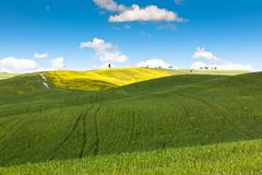 outdoor tuscan hills landscape - stock photo