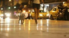 Athens city views - dog in collar - stock footage