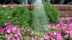 City Worker Watering Flowers in Sunlight Stock Footage