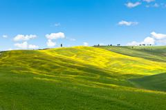 Tuscan val d'orcia background Stock Photos