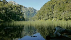 Slider shot of a lake in Huerquehue national park in Chile Stock Footage