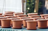 Stock Photo of clay pots