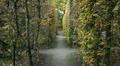Mirabell garden, Salzburg HD Footage