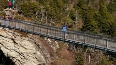 Slow pull away of tourist bridge on Grandfather Mountain Stock Footage