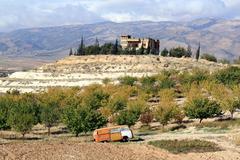 Autumn in bekaa valley Stock Photos