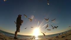 Man feeding Sea Gulls Stock Footage