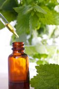 herbal medicine with dropper bottle - stock photo