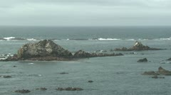 P02395 Seal Rocks in the Pacific Ocean Stock Footage