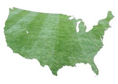 Usa cut grass map Stock Illustration