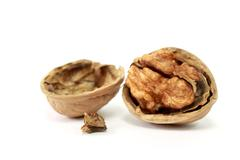 walnut in nutshell - stock photo