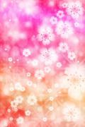 Cherry blossoms background Stock Illustration