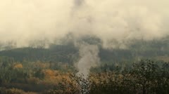 Real time footage of smoke coming out from a industrial area below the trees Stock Footage