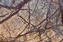 Marble stone Stock Photos