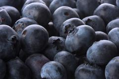 Stock Photo of blueberry background