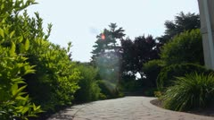 Stone Path Dolly Stock Footage