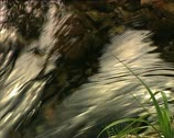 Stock Video Footage of WATER river defocus