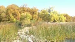 Lake in Fall Season Pan 180 Stock Footage
