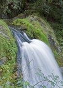 Stock Photo of idyllic triberg waterfalls