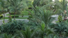 Hotel resort tropical garden palm trees Mexico HD 4352 Stock Footage