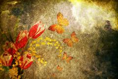 Stock Photo of vintage old burnt paper with flowers and butterfly; .