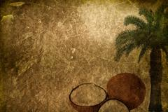 Grunge tropical background with space for text or image. Stock Photos