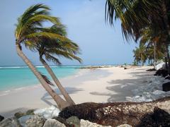 Barbados Stock Photos