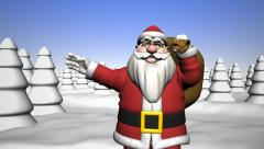 Greetings from Santa Claus. - stock footage