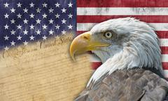 american flag and bald eagle. - stock photo
