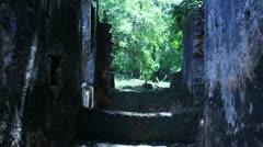 Jumba Ruins Coral Walls     (HD) Stock Footage