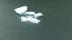 Iceberg w/ bird in flight - stock footage