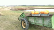 Pumpkins-in-trailor-on-farm Stock Footage