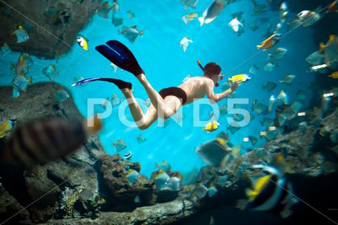 Stock photo of snorkeler