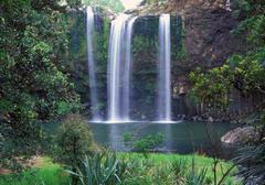 Whangarei falls Stock Photos
