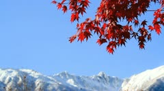 The mountains in autumn. Stock Footage