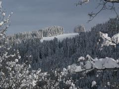 Winters Scene - stock photo