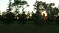 Sunset Through Trees Driving Stock Footage