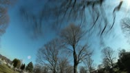 Driving Thru Trees Timelapse Stock Footage