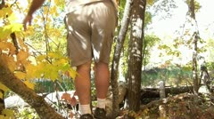 Walking on Log in Fall Stock Footage