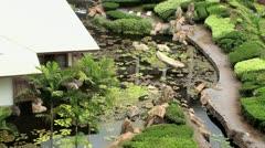 Grand Wailea Gardens Maui Stock Footage