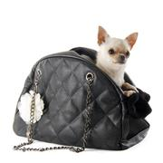 travel bag and chihuahua - stock photo