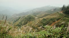 Terraced rice fields in mountains Stock Footage