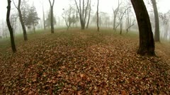 Foggy 5 Stock Footage
